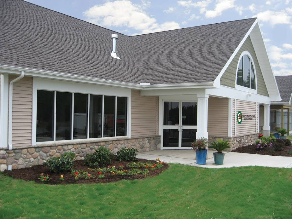 Image of Maryland Shore Pet Resort, LLC which provides dog boarding in or near Vienna, MD